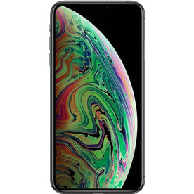 Apple iPhone Xs Max (2 SIM) 256GB Space Gray
